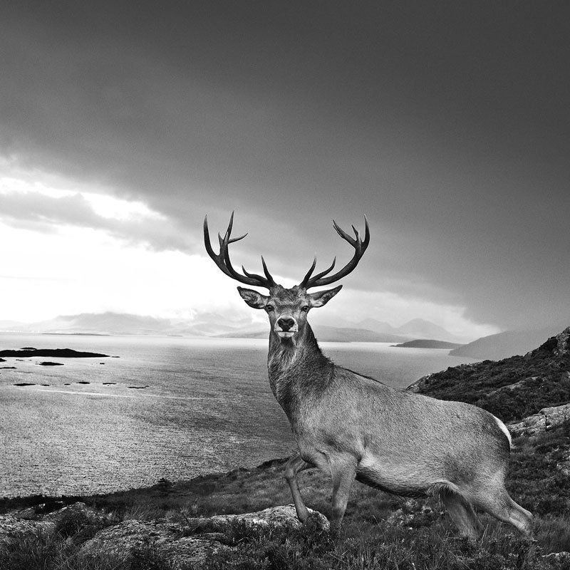 David Yarrow Over The Sea To Skye featured