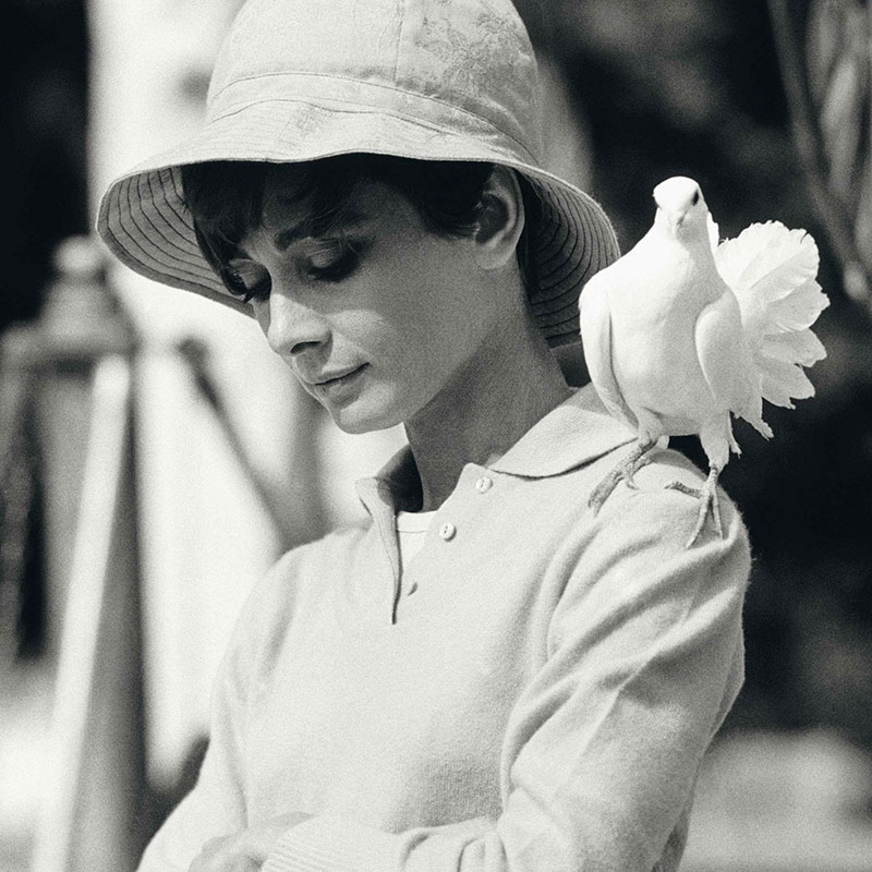 Terry ONeill Audrey Hepburn St Tropez 1967 featured